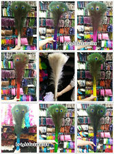 Wholesale 10/20/50/100 PCS 28-32 inches / 70-80-cm peacock feathers eye select
