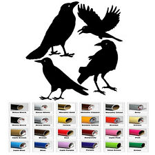 Crow Raven Blackbird vinyl decal Sticker for Car Window Bumper Wall Door Laptop