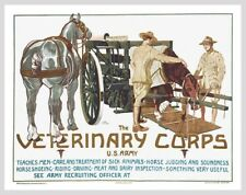 Veterinary Corps US Army Cavalry Horse Poster 1919 World War One I Free Shipping