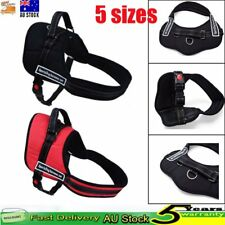 Pet Large Dog Adjustable Sport Harness Collar Stop Pulling Training Chest Strap