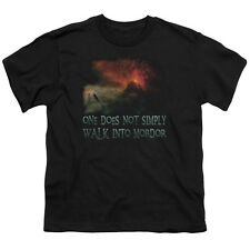 Lord of the Rings WALK IN MORDOR Licensed  Youth T-Shirt S-XL