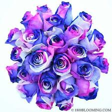 Fresh Cut Tinted Rainbow Roses, Flower Delivery,Bouquet-Event-DIY-Bulk (12-100)