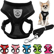 Small Dog Pet Puppy Vest and Leash Set Breathable Mesh Harness Chest Strap