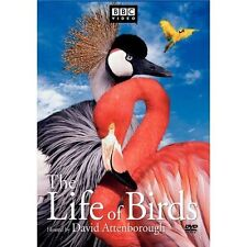 The Life of Birds (DVD, 2002, 3-Disc Set, BBC Video) Brand new! Factory Sealed!