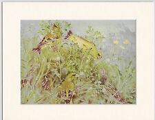 Greenfinches Mounted 1930s Bird Print Black Cream or White Mounts