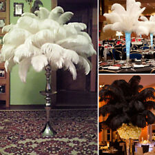 "10 PCS Wholesale Quality Natural OSTRICH FEATHERS ""12-14"" Inch Multiple Colour"