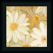 Daisy Story Square II Contemporary Floral Framed Art Print Wall Décor Picture