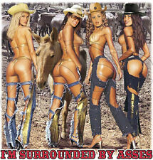 Dixie Tshirt Im Surrounded By Asses Cowboy Hot Cowgirl Donkey Farm Country Chick