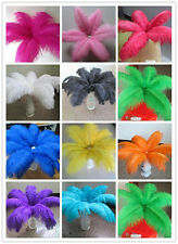 Pretty 10-200 pcs natural ostrich feathers 6-24 inch /15-60 cm Free shipping