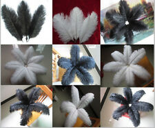 Beautiful 10-100pcs (white/black) natural ostrich feathers 6-26 inch/15-65cm