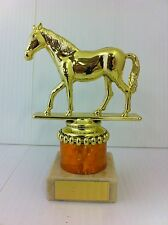 HORSE,EQUESTRIAN TROPHY, AWARD,FREE ENGRAVING,4 SIZES,7 COLOURS