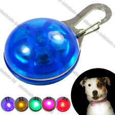 LED Safety Dog Night Light Flashing Colour Collar Clip Pet Bling Luminous Bright