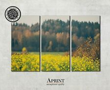 Wall Art Canvas Picture Print - Rapeseed Field - ready to hang 3 panel canvas
