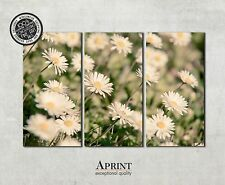 Wall Art Canvas Picture Print - Daisies - ready to hang 3 panel canvas art