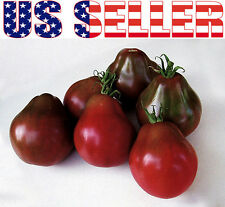 30+ Black Truffle Trifele Tomato Seeds Heirloom NON-GMO RARE Productive Exotic