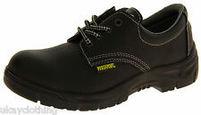 Northwest Territory Leather Tough Safety Warehouse Industrial Work Shoes