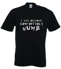 Pink floyd the wall comfortably numb lyrics rock music t shirt mens size