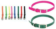 Single Ply Nylon Dog Collar - 3/8 in Wide - 10 to 14 in - all colors !
