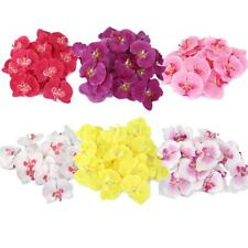 20pcs Artificial Silk Butterfly Orchid Flower Heads Wedding Bridal Decor Craft