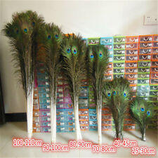 DIY craft 50/100pcs beautiful peacock tail feathers eyes 10-36 inches/25-90cm