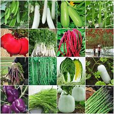 Heirloom Garden vegetable seeds Non-GMO organic Bhut Jolokia Pepper Tomato tree