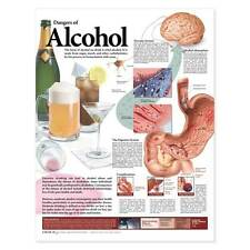 Dangers of Alcohol Anatomical Chart 20x26
