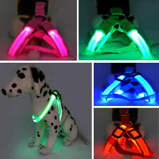 New Cute LED Glow Flash Dog Belt Harness Leash Tether Pet Light-up Safety Collar