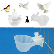 5/10Pcs Automatic Poultry Chicken Bird Water Drinker Cup Plastic Drinking Bowl
