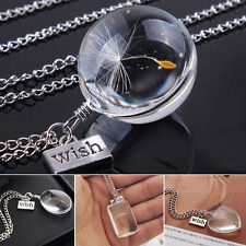 Crystal Ball Real Dandelion Seed Wishing Wish Necklace Long Silver Chain 5 Shape
