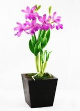 "Potted Double Stem Hybrid Cattleya Orchid Flexible Artificial Clay Flowers 10""H"