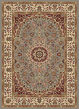 Blue Traditional Oriental Medallion Vines Area Rug Leaves Border Persian Carpet