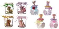 Magical Fairy Wishes Jar With Fairy Figurine, Scrolls and Instructions