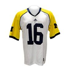 Denard Robinson Michigan Wolverines Under the Lights Jersey 2012  #16