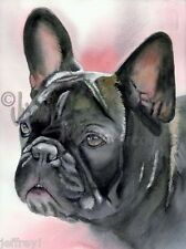 French Bulldog Dog Art Print of Watercolor Painting Judith Stein I'M ALL EARS