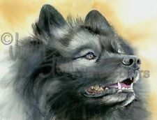 Keeshond Dog Art Print Watercolor Painting Judith Stein Signed SMILING DUTCHMAN