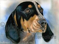 Bluetick Coonhound Hound Dog Art Print Watercolor Painting Judith Stein Signed