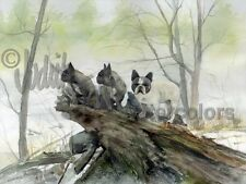 French Bulldog Dog Art Print of Watercolor Painting Signed FRENCHIES IN THE MIST