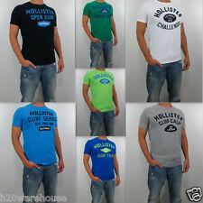 NWT HOLLISTER By Abercrombie Men 2013 Muscle Slim Fit Embarcadero T Shirt Tee