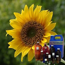 Sunflower Oil 100% Pure Organic High Oleic Cold Pressed Sizes 3 ml - 1 Gallon