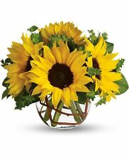 Teleflora's Sunny Sunflowers. T152-2A. Fresh Flower Delivery by Florist