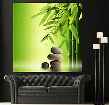 Wall Art Canvas Giclee Print Spa Zen Colorful Picture Decor Print