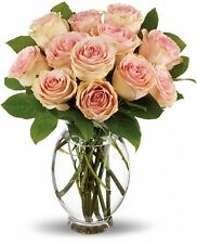 Long Stem pink roses Bouquet  Qt 12, 18, 24 - Valentine's Day Flower Delivery
