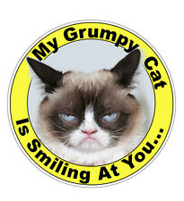 My Grumpy Cat Is smiling At You Vinyl Sticker (xbox, ps4, phone, window, bumper)
