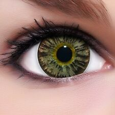 "Circle Lenses ""Nudy Brown"" Coloured Contacts Color Contact Lenses  + Free Case"