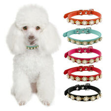 Diamond&Pearl Flowers Rhinestones Suede Faux Leather Dog Puppy Pet Collar