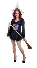 Womens Ladies Wicked Witch Fancy Dress Costume Purple Corset Plus Size Halloween