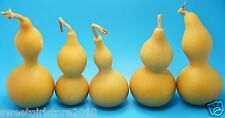 Free ship from China!lot of 5 DRIED&CLEANED BOTTLE GOURDS best size 5pcs in pack