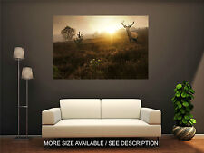 Wall Art Canvas Print Picture Foggy Sunrise in Forest with Deer-Unframed