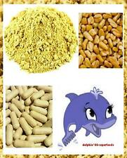 Quality Fenugreek Seed Capsules - Maintains Breast Milk - Reduces Hot Flushes