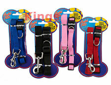 Dog Collar & Lead Set Available in Pink Blue Black Red Puppy Gift Dog Present